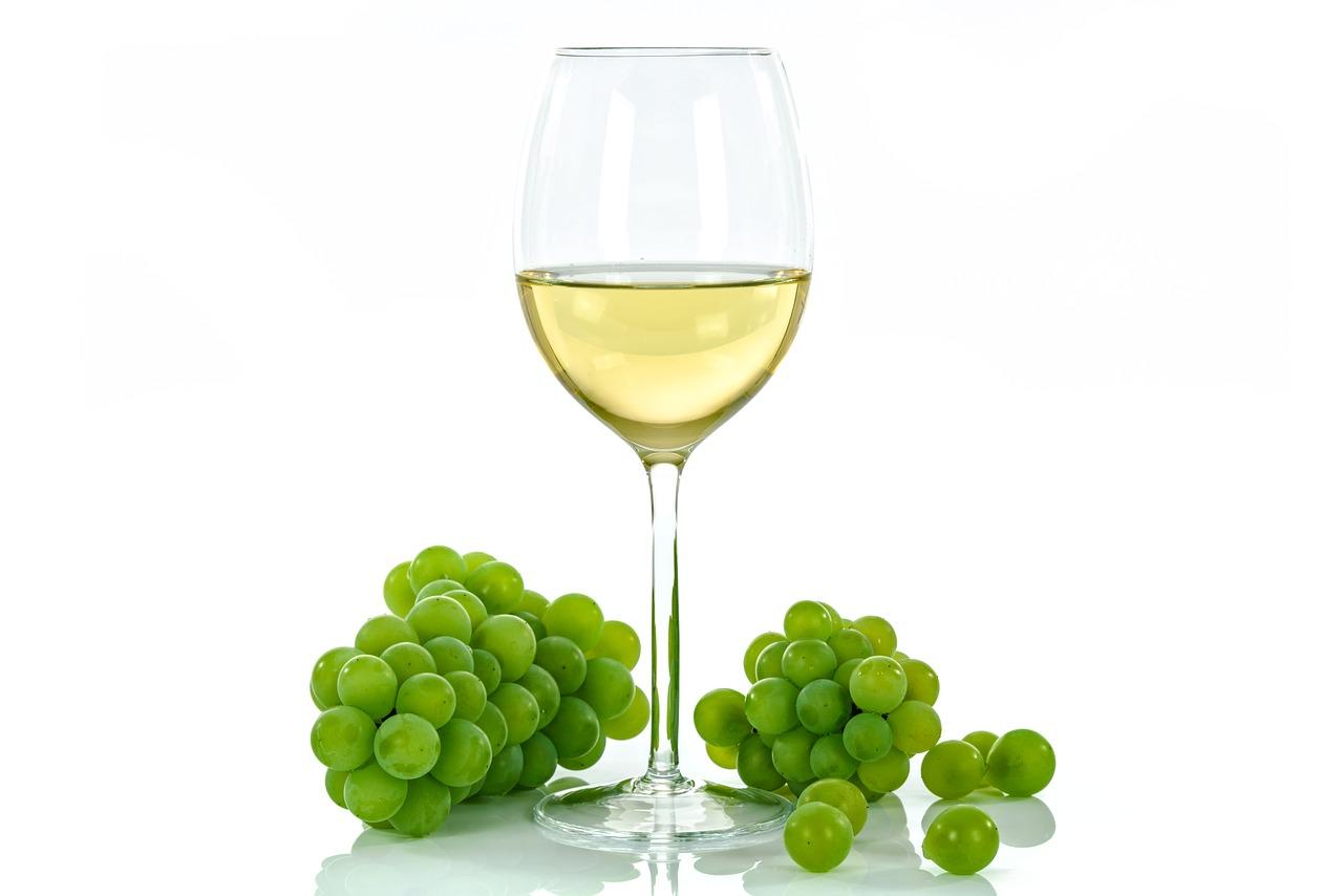Wine Trekking- sulle colline di Moglio